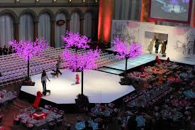 Red Carpet Connections Stage Runway Rentals