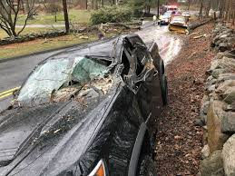 Tree Falls On Pickup Truck, Driver Extricated In New Canaan ...