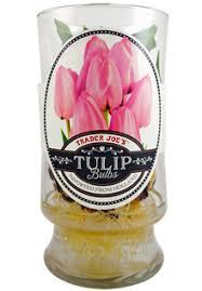 trader joe s tulip bulbs reviews trader joe s reviews