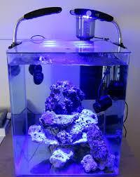 aquarium nano eau de mer nano eau de mer