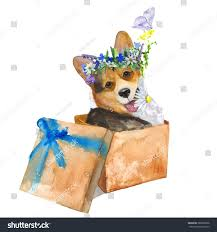 Dog Box Animal Gift Corgi Dog Stock Illustration 388506388 ... Lintran Dog Transit Box In Chesterfield Derbyshire Gumtree Cab 5 Animal Boxes Fitted Dog Box Best Fit For Vw Touareg Maryland Sled Adventures Llc New Truck Project 2 Hole Alinum 200 Gift Corgi Stock Illustration 506388 Ideas Custom Alinum Biggahoundsmencom The Dapper October 2017 Subscription Review Coupon Working Truck Dogs Housed Metal Boxes Located Under Semi Used Kennel Suppliers And