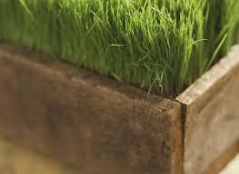 planter box plans free woodworking plans