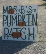 Portland Tn Pumpkin Patch by 2017 Best Pumpkin Patches Near Nashville Nashvillelife Com