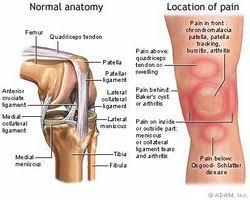 douleur derrière le genou docteur