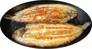 cuisiner une 駱aule de sanglier comment cuisiner une 駱aule de sanglier 28 images recettes de