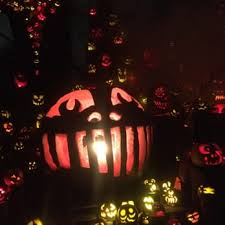 Roger Williams Pumpkin by Jack O Lantern Spectacular 265 Photos U0026 92 Reviews Festivals