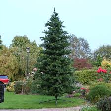 12 Ft Christmas Tree Real by Outdoor Green Richmond Fir Artificial Real Feel Pe Christmas Tree
