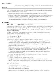 Retail Resume Industry Example