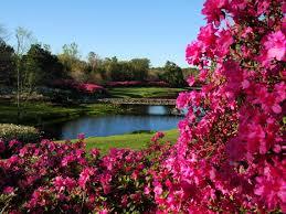 Alabama in bloom at Bellingrath Gardens Alabama NewsCenter