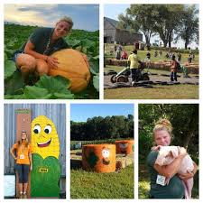 Maryland Pumpkin Patches Near Baltimore by 6 Pumpkin Patches And Corn Mazes Near Odenton Flats170