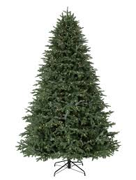 Slim Pre Lit Christmas Tree Canada by Fraser Fir Led Pre Lit Christmas Trees Balsam Hill Australia