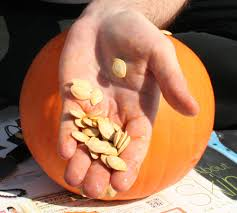 Peter Peter Pumpkin Eater Meaning by Pumpkin And Its Magickal Aspects The Magick Kitchen
