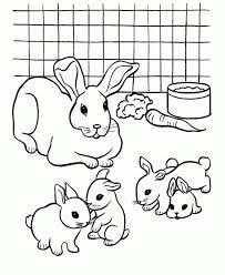 Easy Printable Rabbit Coloring Pages For Children 7U4LH