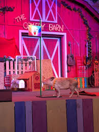 The Comedy Barn's Comedy Critter Show In Pigeon Forge August 2015 Savvy Sightseeing Moms Comedy Barn Theater In Pigeon Forge Tn Tennessee Vacation Discount Tickets To The Juggler At The Niels Duinker From Holland Presents Youtube 2014 Promo Vintage Videos Smokies Crazy Shenigans Jungle Jack Hanna Saves Child Seerville Highway 441 Billboard Advertising Sign Stock