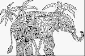 Astounding Adult Mandala Coloring Pages Animals With Free Printable For Adults And