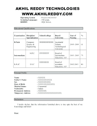 Selenium Resume Manual Points For Fresher – Antiquechairs.co