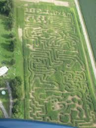 Pumpkin Patch And Corn Maze Milton Fl by Find Corn Mazes In Milton Florida Sonshine Family Farms In