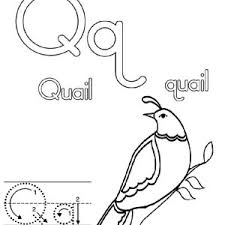Preschool Letter Q Is For Quail Coloring Page