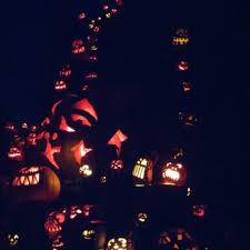 Roger Williams Pumpkin Festival 2017 by Jack O Lantern Spectacular 265 Photos U0026 91 Reviews Festivals