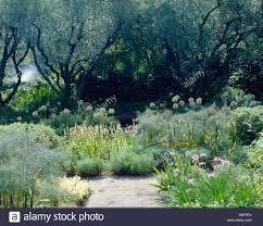 La Landriana Giardini della Landriana Rome Italy The Olive