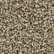 Shaw Berber Carpet Tiles Menards by Carpet Crafts Spicebox Frieze Carpet 12ft Wide At Menards