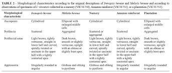Reappraisal of the black mildews Meliolales on Hevea brasiliensis