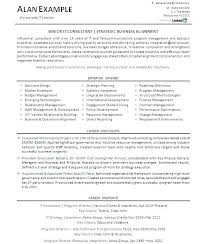 Fashion Creative Director Resume Sample Here Are Of It Manager Resumes Examples