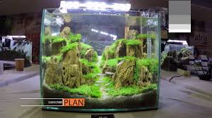 Aquascape Contest - A'Combat Tank 300 - YouTube Aquascape Designs For Your Aquarium Room Fniture Ideas Aquascaping Articles Tutorials Videos The Green Machine Blog Of The Month August 2009 Wakrubau Aquascaping World Planted Tank Contest Design Awards Awesome A Moss Experiment Driftwood Sale Mzanita Pieces Two Gardens By Laszlo Kiss Mini Youtube Warsciowestronytop
