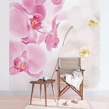 apalis fototapete orchidee vliestapete delicate orchids