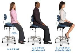 3 in 1 Sit Stand Chair