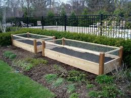 raised gardens beds home outdoor decoration