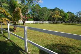 Publix Christmas Trees Miami by Vacation Home La Finca Miami Fl Booking Com