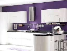 Best 25 Purple Kitchen Paint Ideas On Pinterest