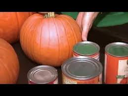 Pumpkin Puree Vs Easy Pumpkin Pie Mix by Pumpkin Vs Pumpkin Pie Mix In A Can Youtube