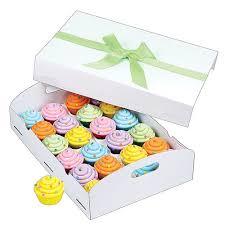 Wilton White Folding Tray Cupcake Box