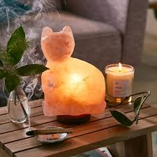 Pyramid Salt Lamp Ebay by Himalayan Salt Lamp Cat The Green Head