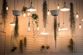 should i buy led or cfl light bulbs the liberty power