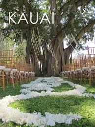 Kauai Hawaiian Wedding Packages