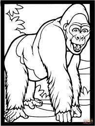 Gorillas Coloring Pages