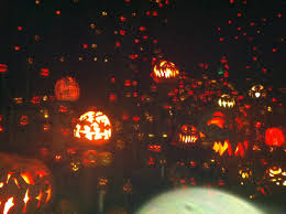 Roger Williams Zoo Pumpkin Spectacular Times by Pumpkin Spectacular The Great Wide Open