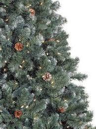 Balsam Christmas Tree Care by Living Christmas Tree Care Christmas Pinterest Live