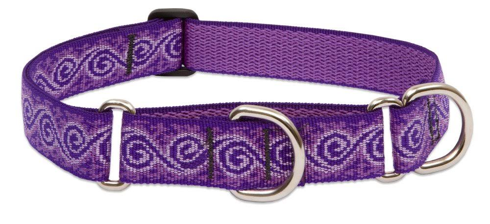 LupinePet Originals Martingale Collar - Jelly Roll, 19-27""