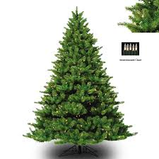 BARCANA 8122710001 10 Appalachian Fir Deluxe with Clear Lights