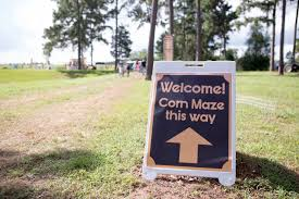 Free Pumpkin Patch In Katy Tx by 5 Great Houston Area Corn Mazes To Visit This Fall Care Com