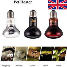 reptile ceramic heater ebay