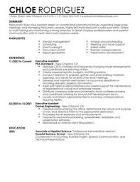 Sample Ceo Resume One Page Template Ma Examples