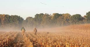 Clarke Farm Pumpkin Patch Chesapeake Va by Enjoying Fall Foliage Find Your Chesapeake National Park