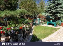 100 Design Garden House Dog Baby Garden House With Flowers On Breeding Dog Station Summer