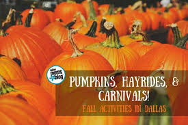 Grapevine Texas Pumpkin Patch by Pumpkins Hayrides And Carnivals A 2017 Guide To Fall Fun In Dallas