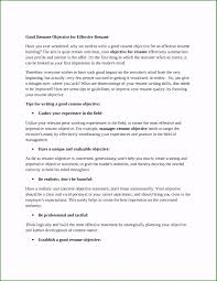Examples Of Career Objectives For A Resume Affordable Career ... Unique Objectives Listed On Resume Topsoccersite Objective Examples For Fresh Graduates Best Of Photography Professional 11240 Drosophilaspeciionpatternscom Sample Ilsoleelalunainfo A What To Put As New How Resume Format Fresh Graduates Onepage Personal Objectives Teaching Save Statement Awesome To Write An Narko24com General For 6 Ekbiz